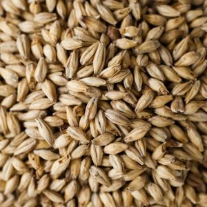 Optic Spring Pale Ale Malt (2 lbs) - Thomas Fawcett & Sons