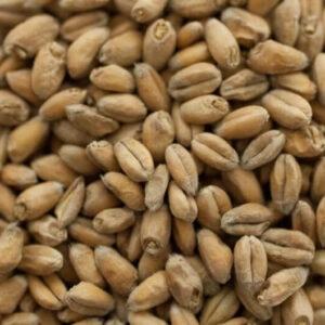 Wheat Malt (2 lbs) - Thomas Fawcett & Sons