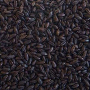 525-EBC Roasted Rye Malt (1 lb) - Thomas Fawcett & Sons