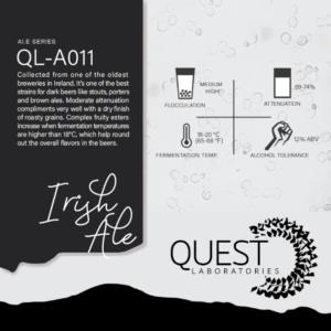 Quest Labs QL-A011 Irish Ale
