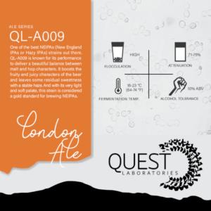 Quest Labs QL-A009 London Ale
