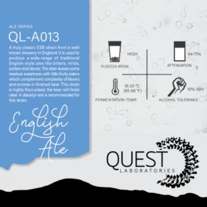 QL-A013 English ale